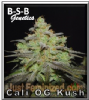 B-S-B Genetics Cali OG Kush Female 5 Seeds
